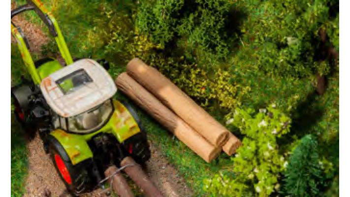 Troncs d'arbres 16pcs