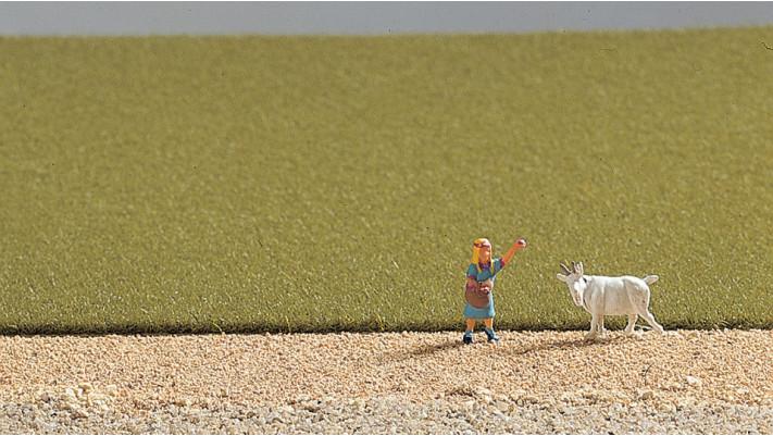 Herbe de champs, vert moyen
