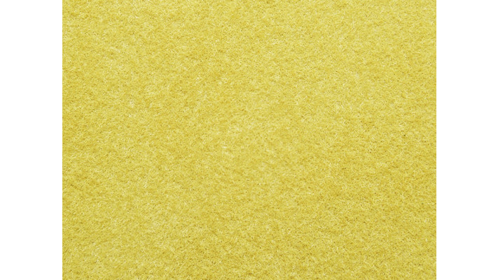 Herbe de champs, jaune d´or