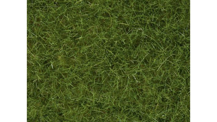 Herbes Sauvages vert clair, 6 mm