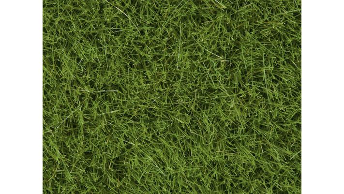 Herbes Sauvages vert jaune, 6 mm
