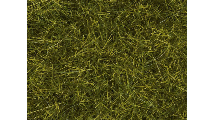 Herbes sauvages XL Pré, 12 mm