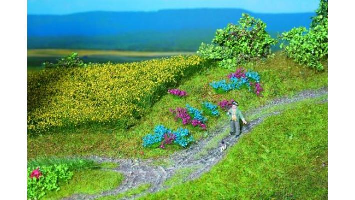 Touffes fleurs de champs