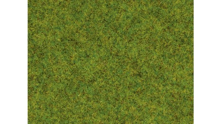 Herbe, pré de printemps, 1,5 mm