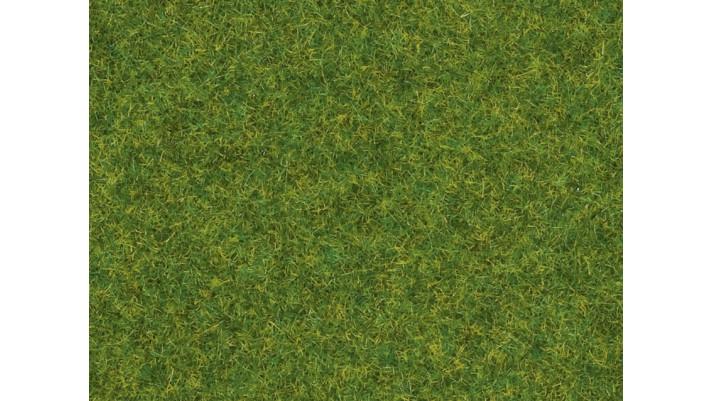 Herbe, Gazon d'ornement, 1,5 mm