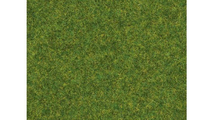 Herbe, Gazon d'ornement, 2,5 mm