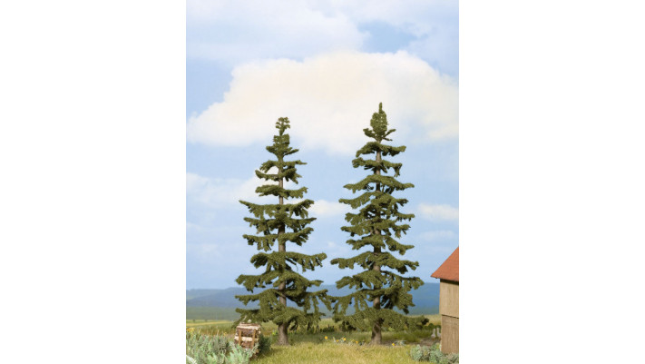 Sapins nordiques, 2 pcs., 17 cm + 19 cm