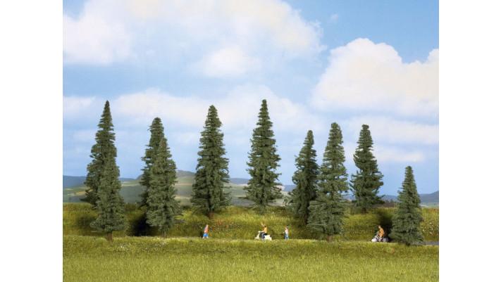 Sapins, 10 pcs., 10 - 14 cm