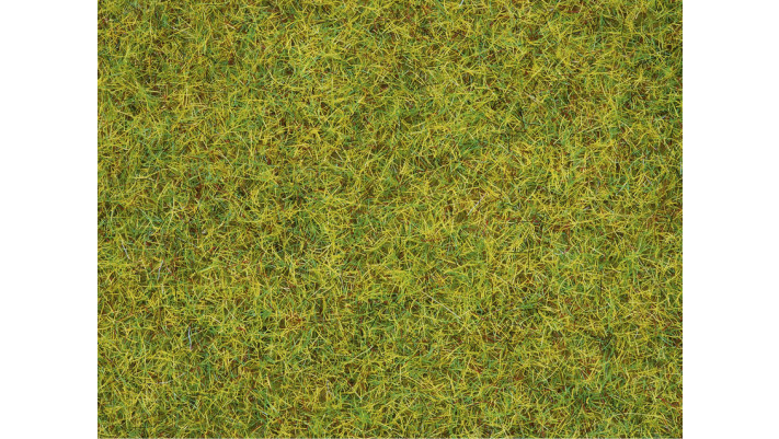 Herbe, Vert Clair, 2,5 mm