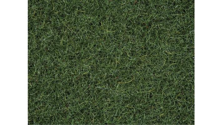 Herbe, Vert Foncé, 2,5 mm