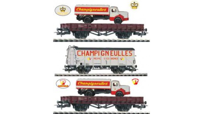 Coffret de 3 wagons &quot