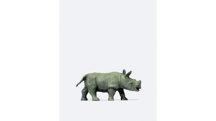 jeune rhinocéros d'afrique