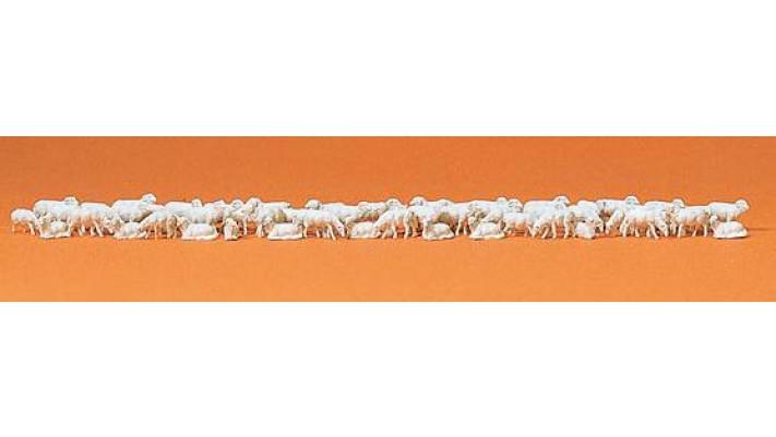 troupeau de moutons 60 figurines