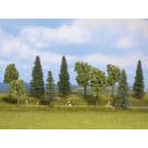 Forêt Mixte, 10 arbres, 4 - 10 cm