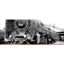 H0 Steam Loco BR 01 DRG, II, AC Dig EXT