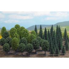 Forêt de feuillus 50 arbres (n)