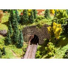 Entrées tunnel déco Landwasser