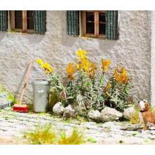 18 plants de primev&egrave