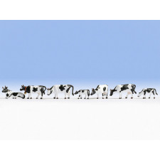 Vaches,  noir-blanc