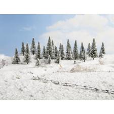 5 Sapins de neige