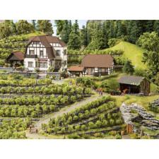 Domaine viticole Hauser-Bühler