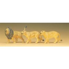 lions par 3