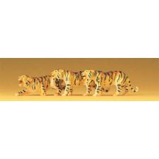 tigres par 3