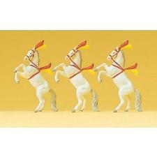 chevaux de spectacles