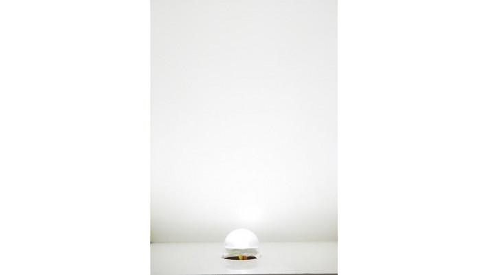 Culot éclairage LED blanc froid