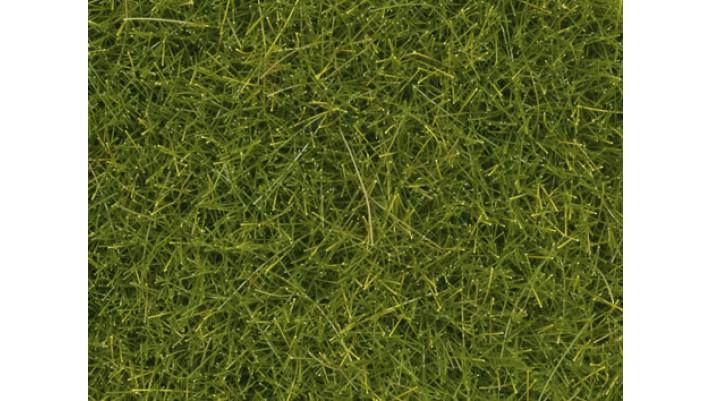 Tapis de prairie printemps, 12 mm
