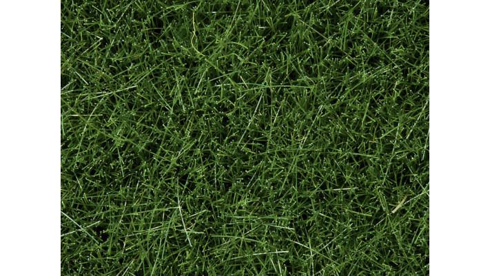Herbes Sauvages Vert Foncé, 6 mm