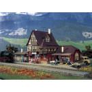 Gare  de Wildbach
