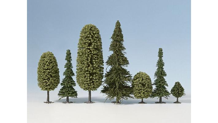 Forêt Mixte, 10 Arbres