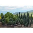 Forêt de feuillus 50 arbres