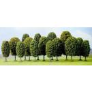 Lot de 15 arbres feuillus