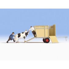 Transport de boeufs